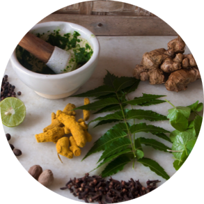 ayurvedic-healing-and-naturiopathic-medicine-at-the-healing-clinic-highland-park