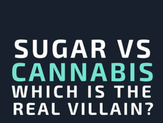 Sugar, not cannabis, is the real villain | Infographic