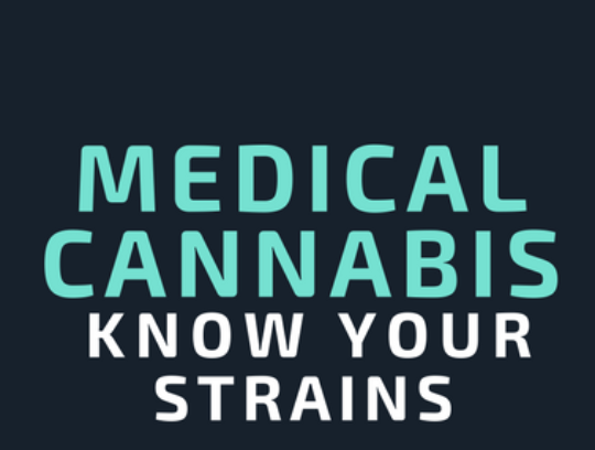 Consider the strain when you choose your medical cannabis | Infographic